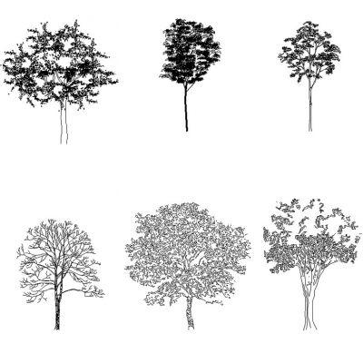 Rboles y plantas page 2 - Dessin dxf gratuit ...